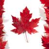 カナダの新しいパスポートへ導入された、隠れた工夫が素敵!