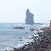 鹿児島旅行記⑥:JRの終着駅がある漁港の町!「枕崎」の見所3選。