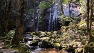 天橋立だけじゃない!森林浴を楽しめる絶景スポット「金引の滝」