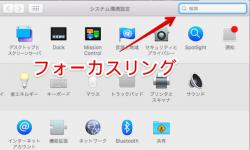 [Mac] フォーカスリングアニメーションをオフにする方法! 検索フィールド選択時の青色を消そう