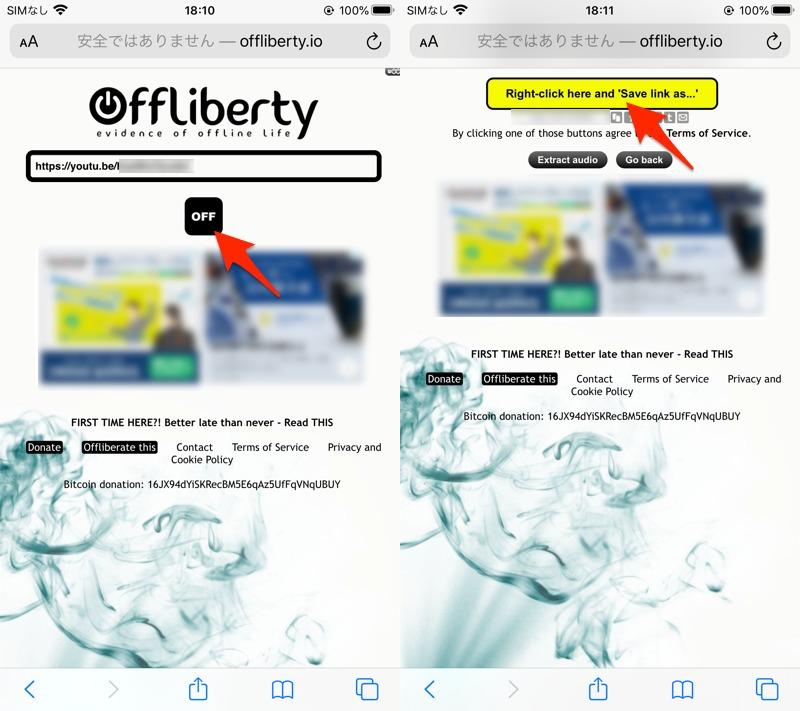 サイトOfflibertyからiPhoneでYouTubeをダウンロードする手順1