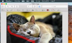 [Mac] プレビューアプリで画像の背景を削除して 透明にする写真加工の方法
